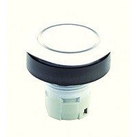 Pushbutton Head with ring illumination, white coated_RQJTLREWS